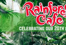 Summer With Rainforest Cafe