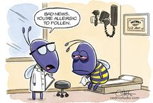 Allergy Humor / Sometimes you just need to laugh about all of that sneezing.