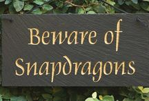 Garden Signs / Humor and whimsy are welcomed in a garden. Signage, tastefully done, helpful. A Pinterest board provides space for all the signs you want.