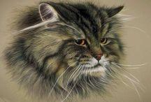 Коты. / Фамильные коты. Учусь пластики и грации у своих родственников.
