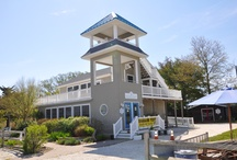 Cape May NJ Nature Center