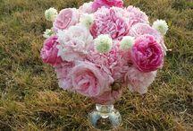 소소한꽃 / 영원히나와함께할 꽃