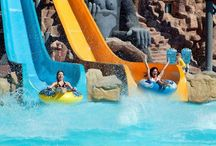 Nu rata ofertele Last Minute, pentru un sejur de vis cu familia ta în Sharm El Sheikh! / Intră pe link să vezi cât de puțin costă o vacanță în Egipt: http://goo.gl/2gFwWZ #VacanțaLastMinute #VacantaEgipt