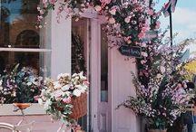 | Florals | / Floral Love | Floral Design | Floral Arrangements |