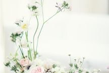 kwiaty na stoly