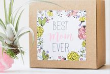 Mothers Day & Spring
