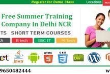 Free Summer Training Companies