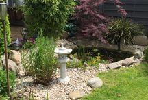 Garten / Kleiner Garten