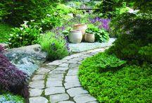 Jardines y huertos
