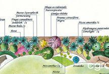 projekty ogrodowe