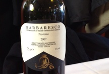 Wines / The best italian wines