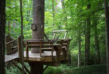treehouse I
