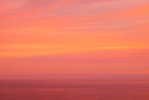 Cariloha | Sunset Coral