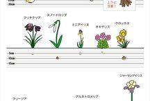 庭の教科書