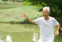 OVLÁDÁNÍ VNITŘNÍ I VNĚJŠÍ SÍLY - CONTROLLING INTERNAL AND EXTERNAL FORCES / Inner energy, cultivation and practice
