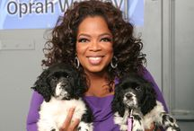 Celebrities & Their Pets / Fun stories about celebrity pets and celebrities who love their pets