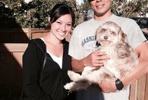 Pet Rescues