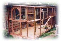Hønsebur