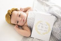Baby Milestone Cards - The Winter Snowflake Collection