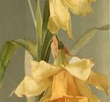 flori pt acuarela
