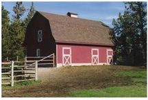 Barns / Barns / by Lisa Bromley Heise