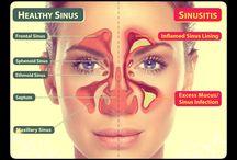Nose - Rhinology