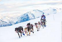 Lekkarod - Alpe d'Huez