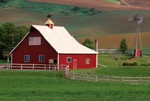 Farm Living / by Becky McQuinn