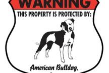 American Bulldog Signs and Pictures / Warning and Caution American Bulldog Dog Signs. https://signswithanattitude.com/american-bulldog-signs.html