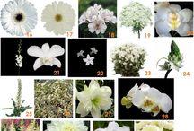 Svatební kytice-bílo /zelené