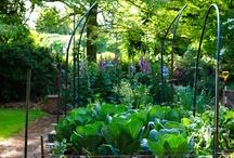 Garden things / Garden things