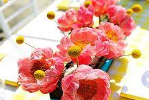 fleurs / by Émilie Nacci Lanoë