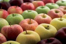 Ποικιλίες μήλων / Μήλα είδη και ποικιλίες