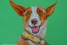 Hondenschilderijen