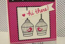 birdcage/bird