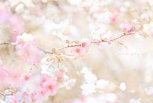✿ ~ Весна. Spring ~ ✿ / Весна - природное средство для воспитания хорошего настроения :)!