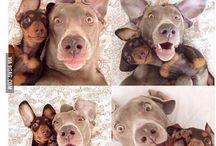 Ha, selfie time!