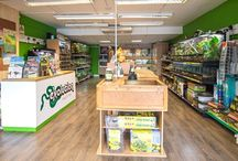 Our Shop - Evolution Reptiles / We have a beautiful reptile shop in Kidlington, Oxford, UK. Come and see it for yourself. We would love to meet you!  We specialise in captive bred reptiles and aim for the highest welfare standard we can.