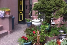 City that Never Sleeps / My Original Home! Pictures of My Neighborhoods in Brooklyn That I Hope To Live Again <3