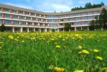 Jaro je tady! - Spring is here! / V Activitypark Hotel Všemina.