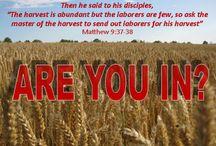 Empowering Everday Evangelizers