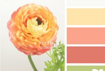 Color Schemes / When you need an idea of what color to use for that next web design or craft project. / by Teajai Kimsey