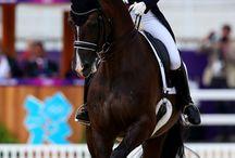 Dressage / Amazing horse riding