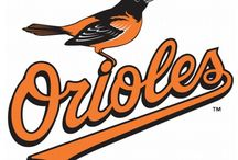 Baltimore Orioles / by Susan Barnhouse
