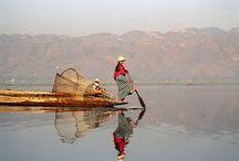 El Lago Inle / En pleno corazón birmano, se encuentra el Lago Inle, un tranquilo lugar para descansar y disfrutar de la naturaleza, caracterizado por sus pueblos y huertos flotantes y sus peculiares pescadores que, trasladándose en barca, consiguen remar con la ayuda de una pierna.