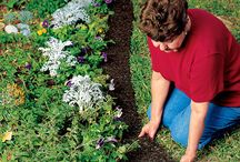 Tips for your gardens,,, / Time for gardening,,,