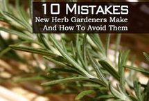 Herb hints