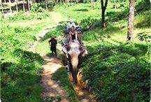 Khao Lak Tours and Excursions