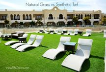 Synthetic Grass Blogs / Through this blog, our team will share insights on relevant news in the synthetic grass industry, and updates on our work!