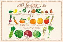 calendrier legumes